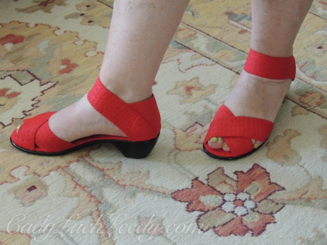 My Scarlet Shoes