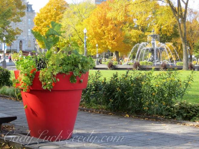 Red Orange in Quebec City, Canada