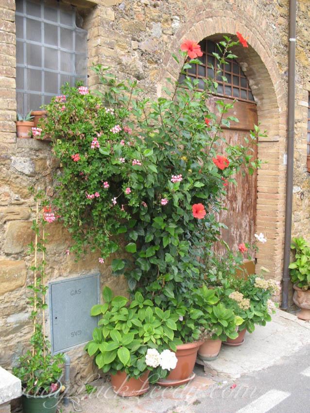 Montisi, Italy Door