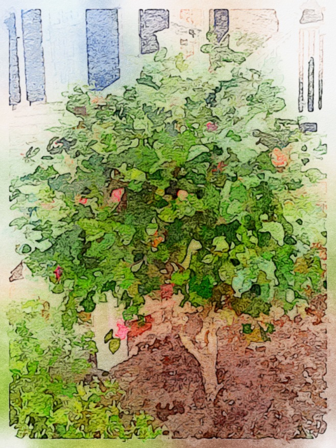 #2 Painted in Waterlogue