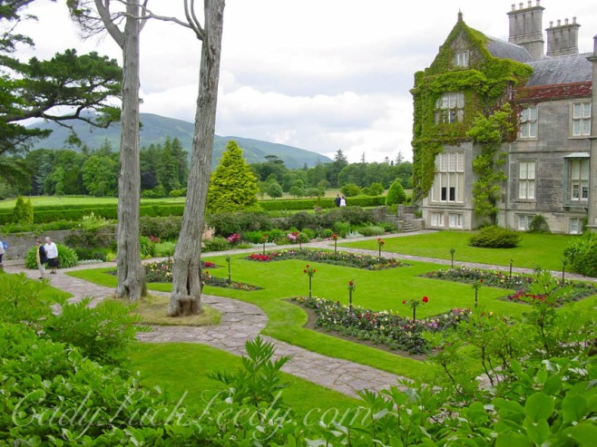 Muckross House Garden, Killarney, Ireland