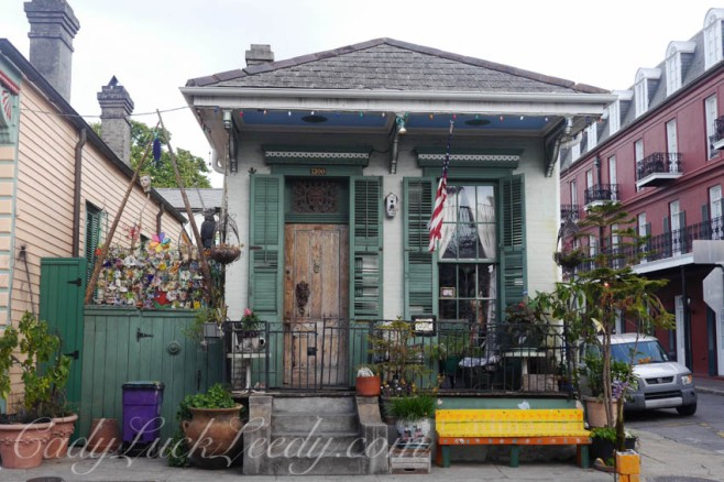 Shot Gun House, New Orleans, Louisiana