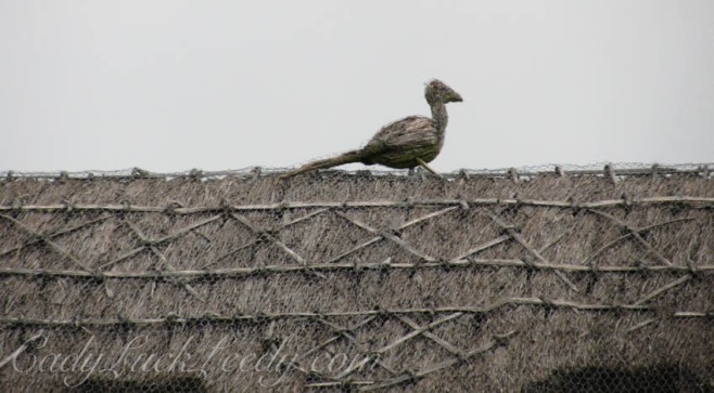 The Fake Pigeon Pet on a Straw Roof