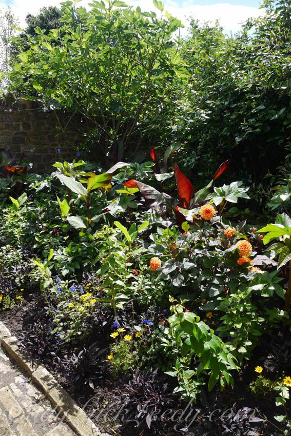 A Few Garden Photos at Tintinhull