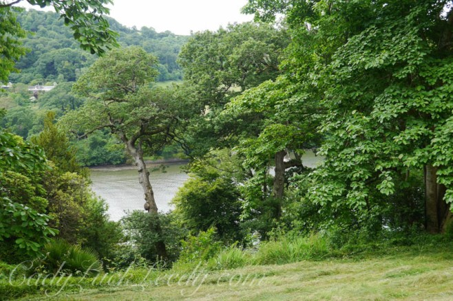 A View of the River Dart at Greenway