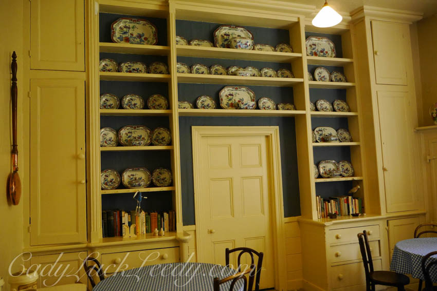 Just One of the Pantries Full of Dish Collections!
