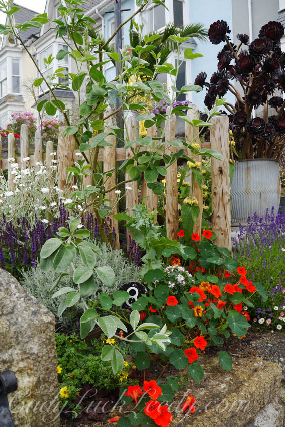 The Victorian Gardens at St Ives, Cornwall