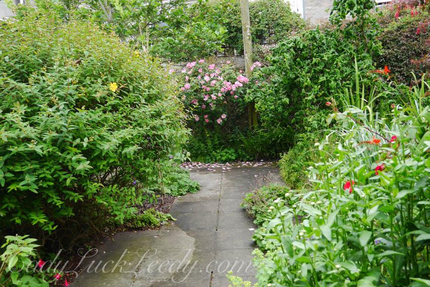 St Ives Secret Gardens