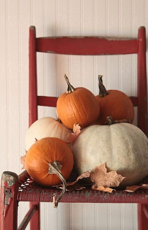 Easy Peasy Pumpkin Porch