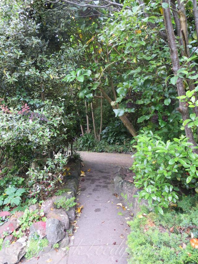 The Garden of Trewyn House, St Ives