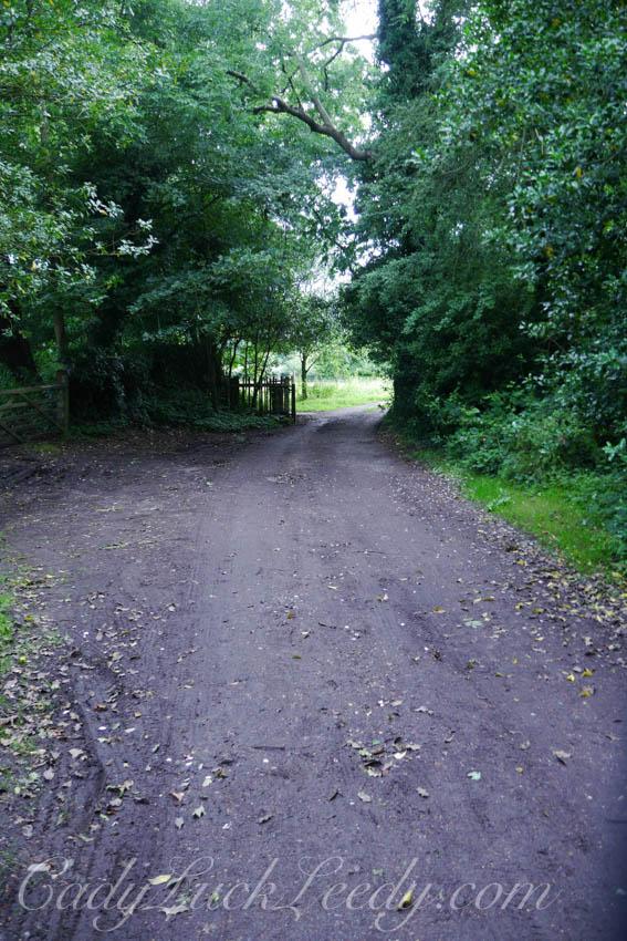 The Smaller Lane. Benenden,UK