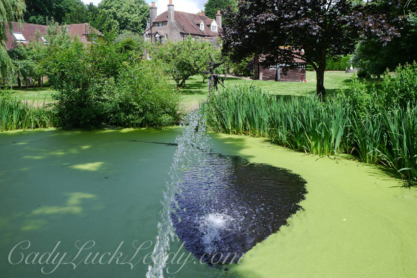 The Pond at Cowbeech House, Hailsham, UK