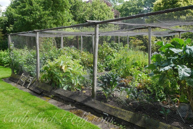 Into the Vegetable Garden at the Potting Shed, Benenden, UK