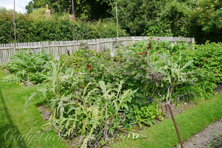 The First Vegetable Patch, The Potting Shed, Benenden, UK