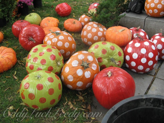 Pumpkins in Quebec City, Canada