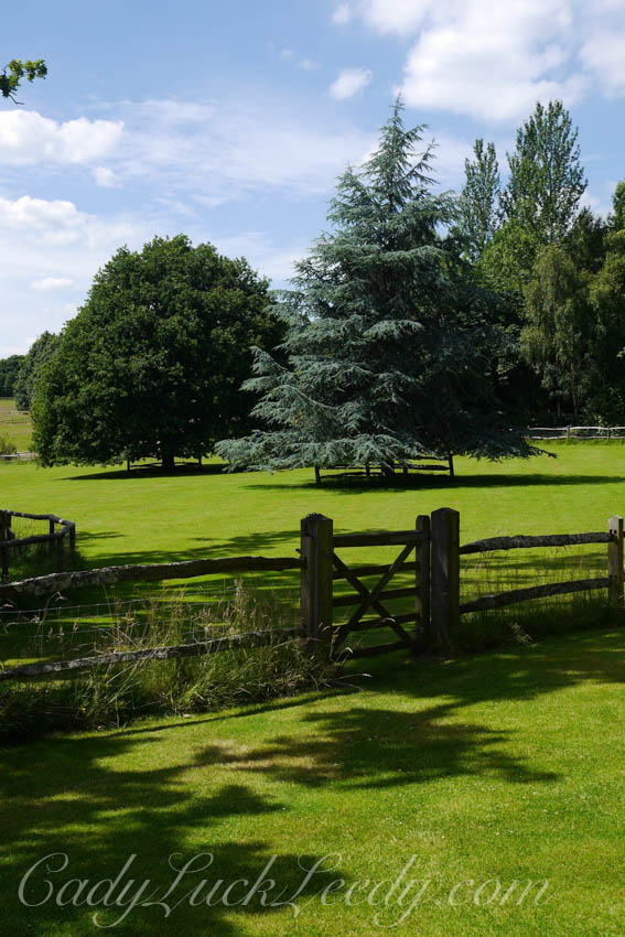 The Landscape of Pashley Manor