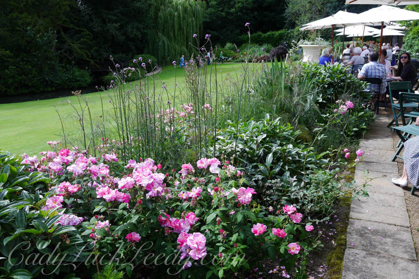 Pashley Garden, Ticehurst, UK